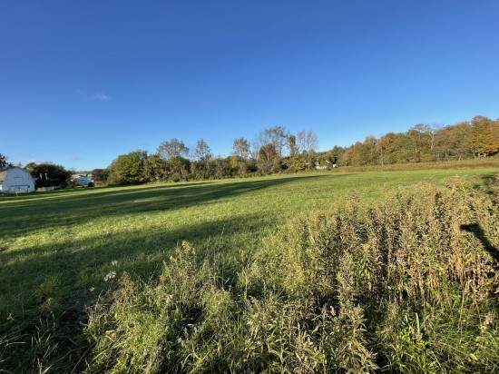 Commercial lot for sale in village of camden new york view of road frontage from NYS Route 69